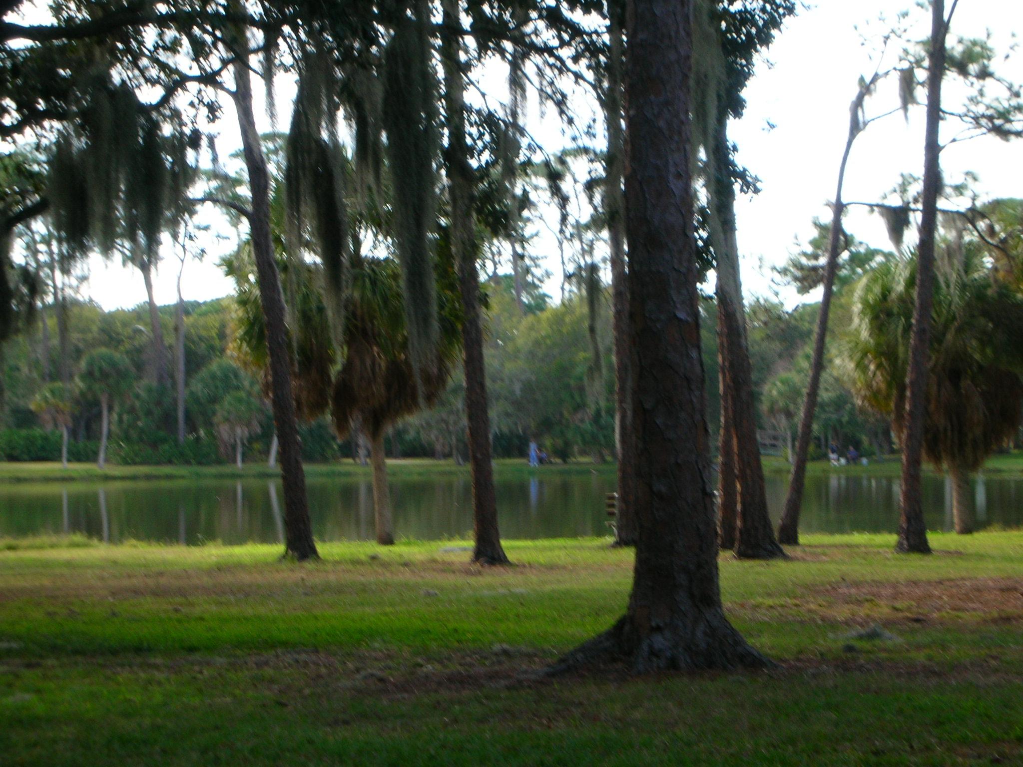 About Seminole Isle