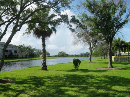 landscaping Seminole Isle